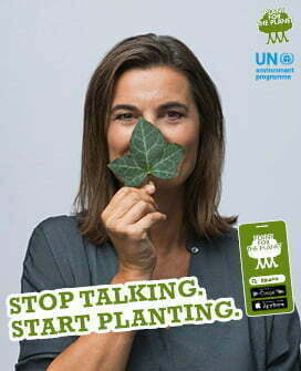 Ilka Schneider - Stop talking. Start planting.